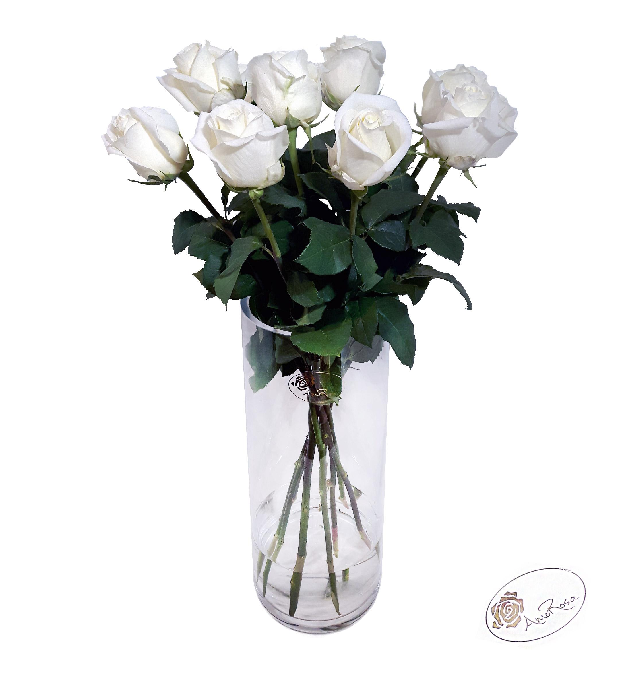 langstilkede roser pris